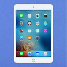 Apple - iPad mini 4 16GB(A1538)
